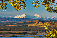 Mt Hess and Deborah, (left to right), prominent peaks in the Alaska range mountains, Tanana river in the foreground, interior, Alaska.
