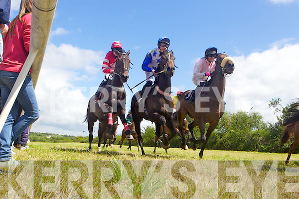 Action from the annual Horse and Pony racing in Abbeyfeale last Sunday at Relihan's Inch.