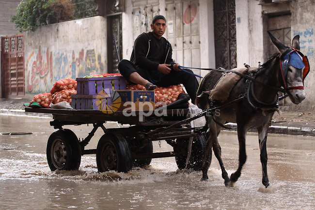 A Palestinian man rides his cart in a flooded street after a torrential rains Gaza city, on Dec. 05, 2013. Photo by Mohammed Asad
