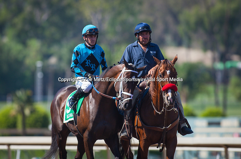 "September 26, 2015: Hollywood Don in the post parade for the Breeders' Cup ""Win and You're In"" FrontRunner Stakes at Santa Anita Park in Arcadia, California. Zoe Metz/ESW/CSM"