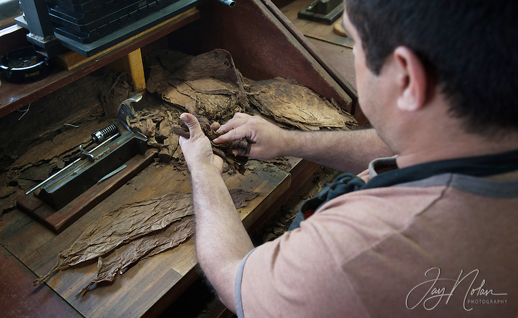 A cigar maker, known as &lsquo;Leyva&rsquo;, rolls cigars in a shop along 7th Avenue in Ybor City today, Thursday 6/11/15.<br />