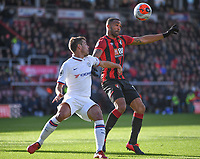29th February 2020; Vitality Stadium, Bournemouth, Dorset, England; English Premier League Football, Bournemouth Athletic versus Chelsea; Callum Wilson of Bournemouth holds off Cesar Azpilicueta of Chelsea but is unable to get his shot away