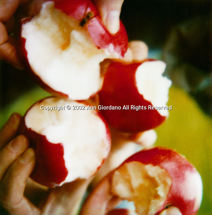 Hands holding four half eaten apples in cluster formation