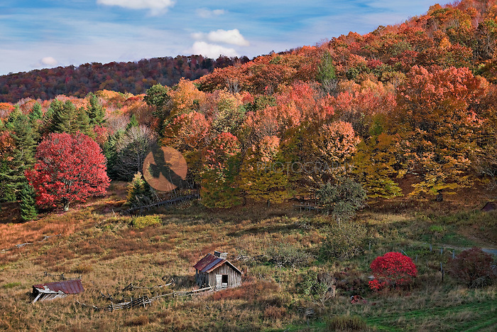 Rural valley scene in mountains of West Virginia with brilliant fall foliage and abandoned shed in foreground