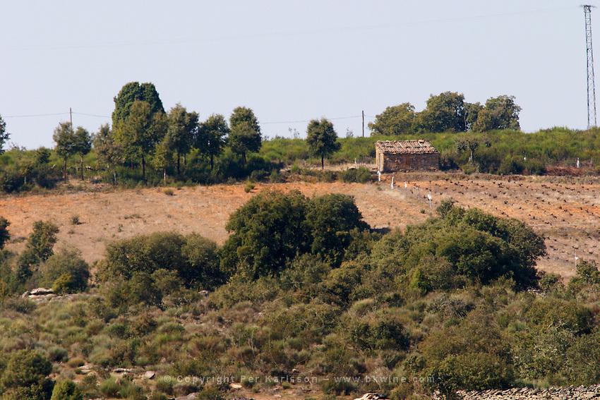 vineyard and fields Bodega La Setera, DO Arribes del Duero spain castile and leon