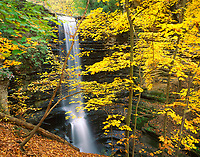 Matthiessen State Park, IL: Matthiessen Falls from Upper Dellls hillside through fall colored maple trees