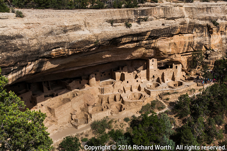 The cliff dwelling Cliff Palace viewed from the stagng area where visitors prepare to make the trek down to the ruin.