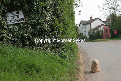 George Lucas.Slow Cats Crossing village sign. Ulliswick Herefordshire. England 2007