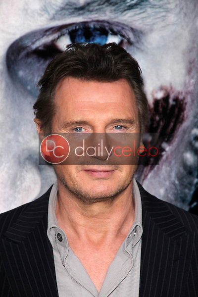 Liam Neeson<br />
