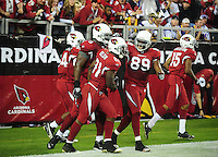 Dec 6, 2009; Glendale, AZ, USA; Arizona Cardinals wide receiver (81) Anquan Boldin is congratulated after scoring a second quarter touchdown against the Minnesota Vikings at University of Phoenix Stadium. Mandatory Credit: Mark J. Rebilas-
