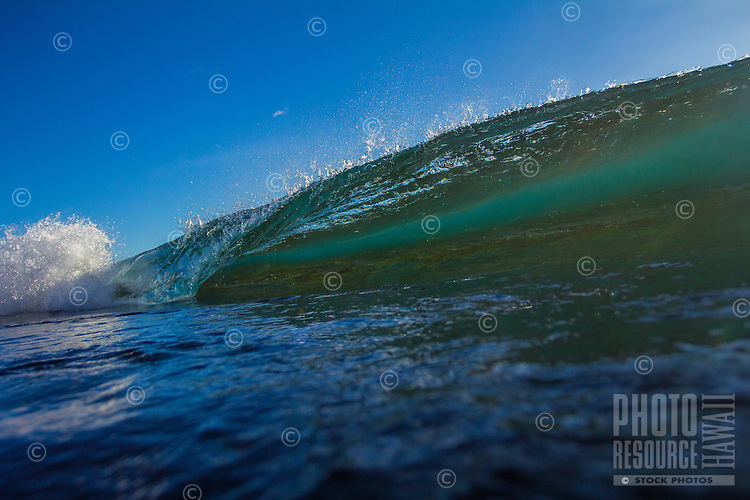 A perfect small breaking wave in West O'ahu.