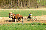Nippenose Valley. Amishman plowing with four horse team.