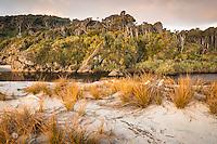 Pingao, native sand dune grass at sunset at Ship Creek, World Heritage Area, South Westland, West Coast, New Zealand