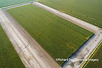 63801-10720 Corn field after it's been cut for silage-aerial Marion Co. IL