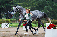 BEL-Manon Minner presents Cool Dancer during the First Horse Inspection for the CCI3*-L7YO. 2019 FRA-Mondial du Lion - FEI World Breeding Championships. Le Lion d'Angers. France. Wednesday 16 October. Copyright Photo: Libby Law Photography