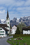 Kirche St. Martin, Pfrundbau, Eschen, Rheintal, Rhine-valley, Liechtenstein.