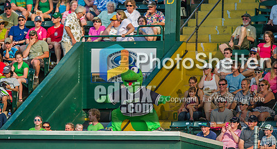 12 July 2015: Vermont Lake Monsters Mascot Champ entertains the fans during a game against the West Virginia Black Bears at Centennial Field in Burlington, Vermont. The Lake Monsters came back from a 4-0 deficit to defeat the Black Bears 5-4 in NY Penn League action. Mandatory Credit: Ed Wolfstein Photo *** RAW Image File Available ****