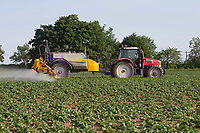 27.5.2020 Spraying potatoes for blight in the Lincolnshire Fens   <br /> ©Tim Scrivener Photographer 07850 303986<br />      ....Covering Agriculture In The UK.