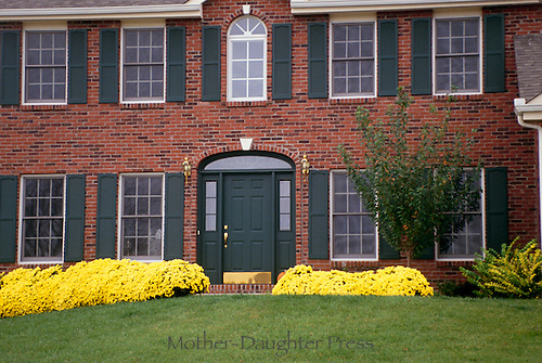 Traditional brick house with yellow mums and perfect lawn from the front