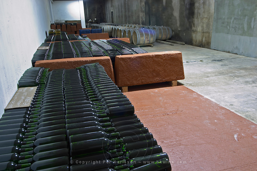 The underground wine cellar for storing and aging wines. Thousands of bottles of wine and in the background barrels. Bodega Plaza Vidiella Winery, Las Brujas, Canelones, Uruguay, South America