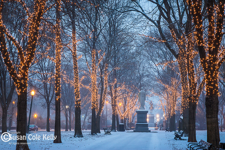 Evening snowfall on the Commonwealth Avenue Mall, Boston, Massachusetts, USA