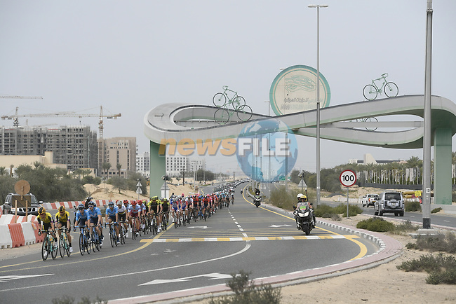 The peloton at Al Quadra Cycle Track during Stage 4 of the 2019 UAE Tour, running 197km form The Pointe Palm Jumeirah to Hatta Dam, Dubai, United Arab Emirates. 26th February 2019.<br /> Picture: LaPresse/Fabio Ferrari | Cyclefile<br /> <br /> <br /> All photos usage must carry mandatory copyright credit (© Cyclefile | LaPresse/Fabio Ferrari)