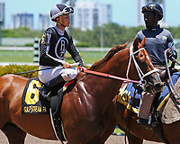 HALLANDALE BEACH, FL - JULY 01:   #6 Pay Any Price (FL) wth jockey Edgar Zayas on board, in the post parade for the Bob Umphrey Turf Stakes on Summit Of Speed Day at Gulfstream Park on July 01, 2017 in Hallandale Beach, Florida. (Photo by Liz Lamont/Eclipse Sportswire/Getty Images)