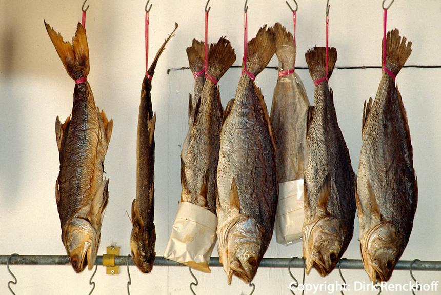 China, Hongkong-Lantau, Trockenfisch in Tai O