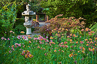 Japanese stone lantern with peruvian lily (Alstoemeria) in Marin Art and Garden Center