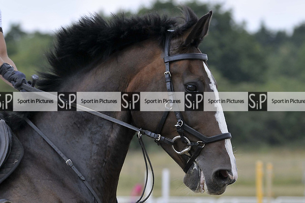 Class 3. British showjumping seniors. Brook Farm Training Centre. Essex. UK. 07/07/2018. ~ MANDATORY Credit Garry Bowden/Sportinpictures - NO UNAUTHORISED USE - 07837 394578