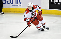HERSHEY, PA - FEBRUARY 09: Charlotte Checkers center Martin Necas (88) crosses over as he skates out of his own end during the Charlotte Checkers vs. Hershey Bears AHL game February 9, 2019 at the Giant Center in Hershey, PA. (Photo by Randy Litzinger/Icon Sportswire)