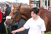 Musselburgh Races 261011