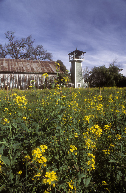 Barn and water tower icons in St. Helena