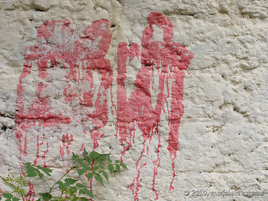 A whitewashed wall in Varkala (Kerala, India) with some letters in an Indian script painted on it with dripping red paint. A young shrub is shooting up before it, as if hoping to hide the letters with its fresh green leaves.