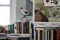 A stuffed owl stands on a bookshelf in Jada Fitch's living room, which doubles as her art studio, in Portland, Maine, USA, on Fri., July 28, 2017. Fitch has recently been making birdhouses that look like living rooms with small portraits of birds. The birdhouses sell out within minutes on her Etsy store.