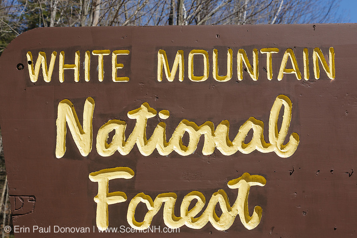 White Mountain National Forest sign along Tripoli Road in Thornton, New Hampshire USA.