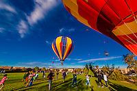 Hot air balloons landing at Desert Ridge Trails Park during the Albuquerque International Balloon Fiesta, Albuquerque, New Mexico USA.