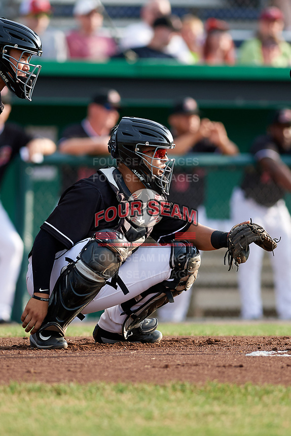 Batavia Muckdogs catcher Igor Baez (29) waits to receive a pitch in front of home plate umpire Jae-Young Kim during a game against the West Virginia Black Bears on July 2, 2018 at Dwyer Stadium in Batavia, New York.  West Virginia defeated Batavia 3-1.  (Mike Janes/Four Seam Images)