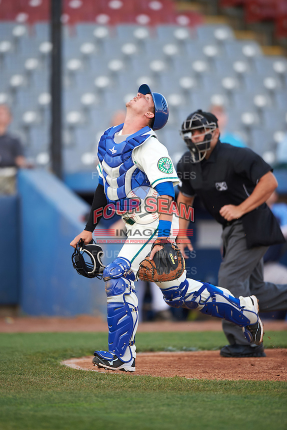 Hartford Yard Goats catcher Ashley Graeter (0) looks for a foul ball popup in front of umpire Jorge Teran during the second game of a doubleheader against the Trenton Thunder on June 1, 2016 at Sen. Thomas J. Dodd Memorial Stadium in Norwich, Connecticut.  Trenton defeated Hartford 2-1.  (Mike Janes/Four Seam Images)