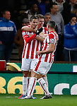 Ibrahim Afellay of Stoke City celebrates scoring the opening goal  - Capital One Cup Quarter-Final - Stoke City vs Sheffield Wednesday - Britannia Stadium - Stoke - England - 1st December 2015 - Picture Simon Bellis/Sportimage