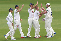 Neil Wagner of Essex is congratulated by his team mates after taking the wicket of Lewis McManus during Essex CCC vs Hampshire CCC, Specsavers County Championship Division 1 Cricket at The Cloudfm County Ground on 21st May 2017
