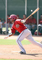 Raul Navarro #3 of the Arizona Diamondbacks plays in a minor league spring training game against the Los Angeles Angels at the Angels minor league complex on March 17, 2011  in Tempe, Arizona. .Photo by:  Bill Mitchell/Four Seam Images.