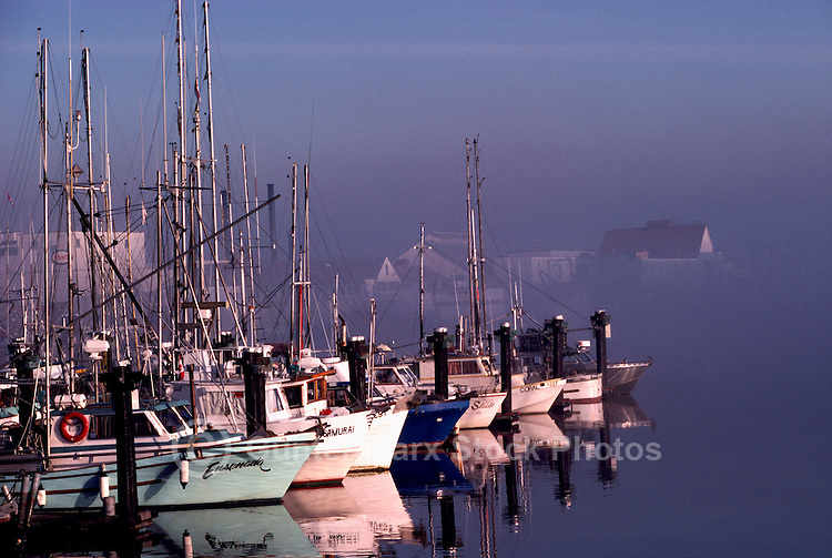Commercial Fishing Boats docked on Fraser River, Steveston, British Columbia, Canada