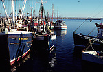 Boats in Provincetown