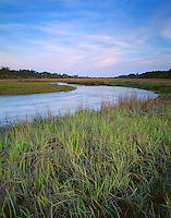 Jekyll, Island, GA<br /> Clam Creek at high tide flowing into saltwater marsh grasses