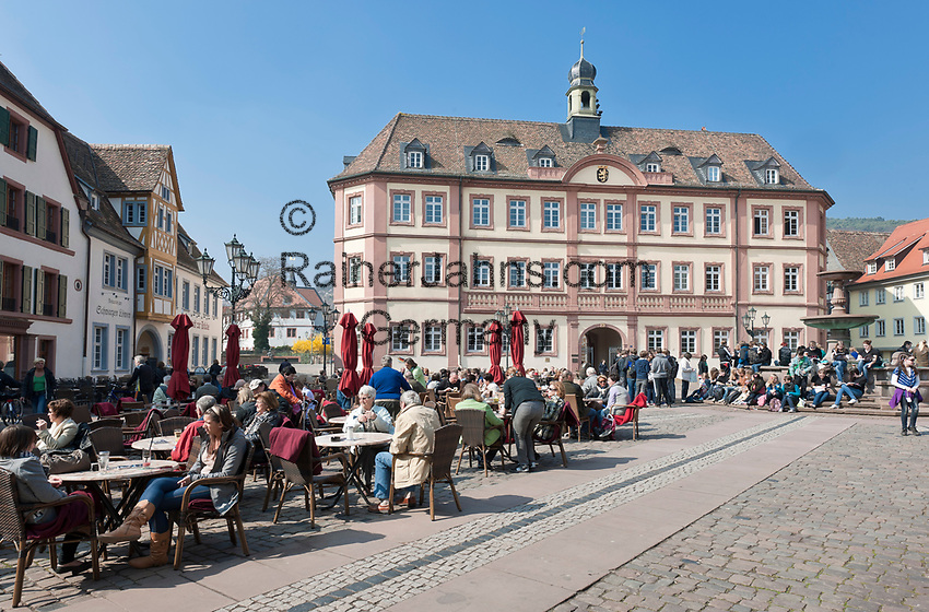 Deutschland, Rheinland-Pfalz, Neustadt an der Weinstrasse: Marktplatz mit Marktbrunnen vor dem Rathaus | Germany, Rhineland-Palatinate, Neustadt an der Weinstrasse: market square with market fountain and townhall