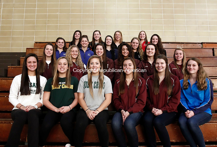 Waterbury, CT- 18 November 2014-111814CM02-  All NVL Girls Swim Team. Bottom row left to right: Holy Cross' Brittany Steinfeld, Madelynn Mowad and Liz Lombardo; Naugatuck's Cara Rotatori, Addison Best; Oxford's Emily Waehler. Second row, from left to right: Erin Brown, Kiersten Snyder, Meaghan Spagnolo, Alizabeth Sullivan, Abby Walsh and Alexa Gallino. Third row, from left to right: St. Paul's Sara Bowes and Kimberly Hylan. Seymour's Emma Crocamo.  Torrington's Jessica Gray and Payton Welch. Back row from left to right: Watertown's Lindsay DiFelice, Lauren Giampietro, Danielle Jacovino and Wolcott's Carrington Conner.  Missing from the photo are Oxford's Ashley Lombardi and Woodland's Sara Fowler.    Christopher Massa Republican-American
