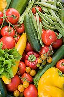 Freshly harvested organic vegetables in basket in Rosalind Creasy garden; squash, cucumbers, tomatoes, peppers, beans, basil