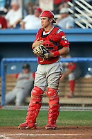 August 3rd 2008:  Catcher Travis D'Arnaud of the Williamsport Crosscutters, Class-A affiliate of the Philadelphia Phillies, during a game at Dwyer Stadium in Batavia, NY.  Photo by:  Mike Janes/Four Seam Images