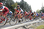 The peloton including Manuele Mori (ITA) UAE Team Emirates climb Colle Brianza during the 112th edition of Il Lombardia 2018, the final monument of the season running 241km from Bergamo to Como, Lombardy, Italy. 13th October 2018.<br /> Picture: Eoin Clarke | Cyclefile<br /> <br /> <br /> All photos usage must carry mandatory copyright credit (© Cyclefile | Eoin Clarke)